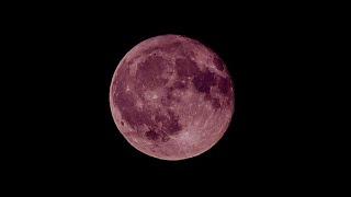 🌝♑山羊座満月💟ストロベリームーン💟のリーディング✨CARDTHERAPY
