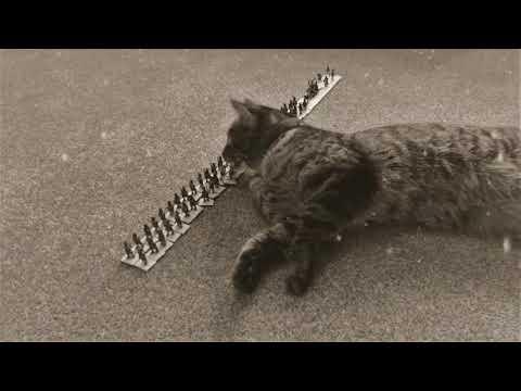 Cossack Cat Attack