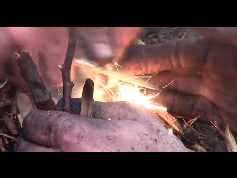 Hypothermic fire starting with wet beach wood