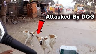 Angry Dog Vs Bikers - WHEN DOGS ATTACK KTM DUKE 200 !!