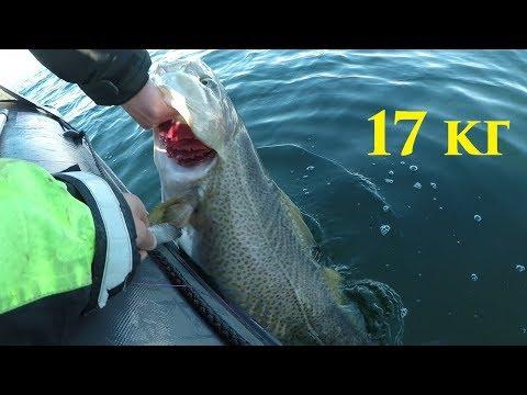 Рыбалка на Баренцевом море / Fishing in the Barents sea