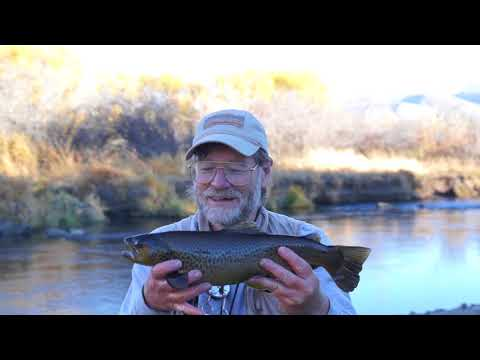 Purple Worm Saves The Day - Fly Fishing Provo River