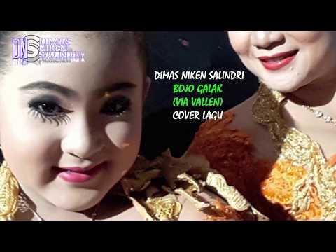 Bojo Galak (PENDHOZA)  Cover By Dimas Niken Salindri