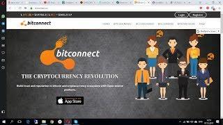 Как купить Bitcoin и вложиться в Bitconnect