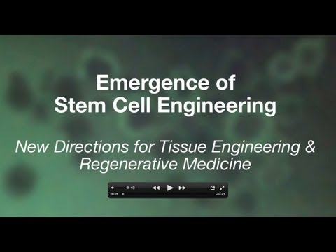 Emergence of Stem Cell Engineering