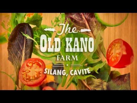 Old Kano Farm