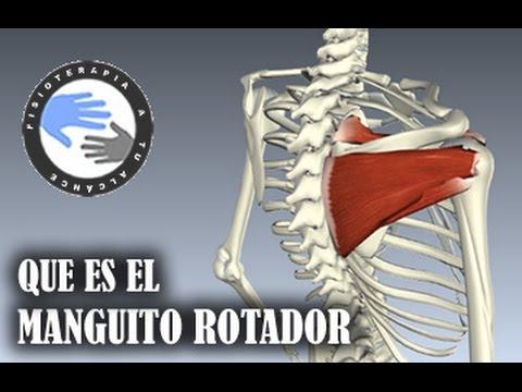 La fisioterapia a la osteocondrosis del departamento lumbar de la columna vertebral por el imán