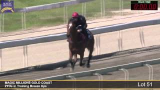Lot 51 - 2YOs in Training Breezeup Thumbnail