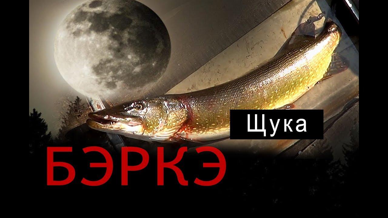 БЭРКЭ. Рыбалка в Якутии. Щука.//Fishing in Yakutia. Pike.