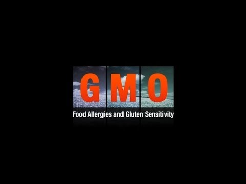 309 - GMO Food Allergies & Gluten Sensitivity - Jeffrey Smith