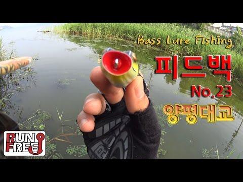 [피드백23화] 양평 양평대교 ' 프로그님 ' Bass L