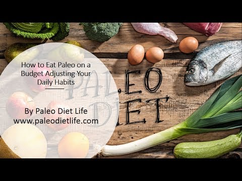 Paleo Diet Life: How to Eat Paleo on a Budget Adjusting Your Daily Habits Your Videos on VIRAL CHOP VIDEOS