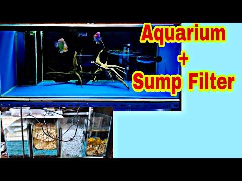 Cara Kerja Dari Sebuah Sump Filter Pada Aquarium