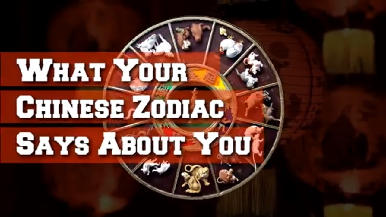 aaecb0ee5 What Your Chinese Zodiac Says About You - YouTube