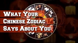 What Your Chinese Zodiac Says About You