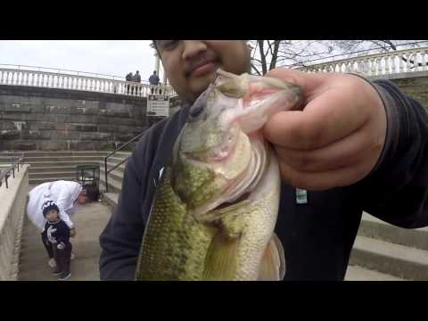 Bass Fishing Under The Fairmount Dam (Philadelphia, PA)