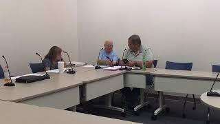 Public Buildings Committee 7 9 19