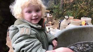 Rybáři Bechyně - výlov rybníku Petr 2018
