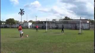 Ceiba rica Penales