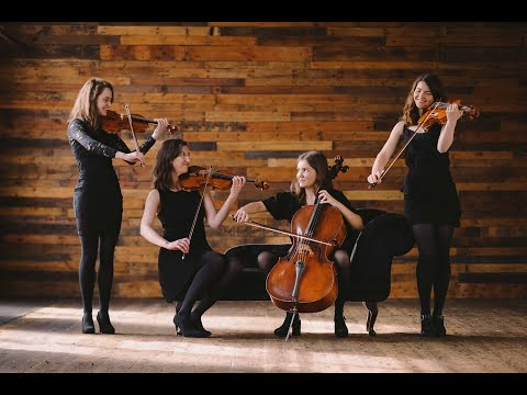 Grazia Strings - Showreel