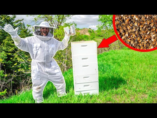 I BOUGHT 25,000 HONEY BEES for My NEW FARM!!! (Bad Idea)