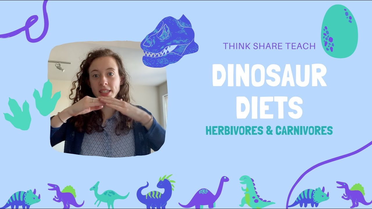 Dinosaur Diets: Herbivores and Carnivores - YouTube