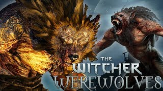 Witcher Monsters: Werewolves - Witcher Lore - Witcher Mythology - Witcher 3 lore - Witcher Werewolf