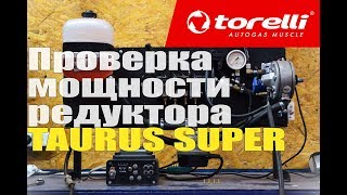Стенд для проверки мощности редуктора Torelli Taurus Super [CTO Milano Ukraine]