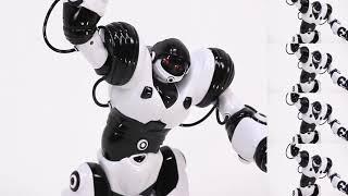 Robosapien X - Robots Inteligentes daniel.fernandez.zas@gmail.com