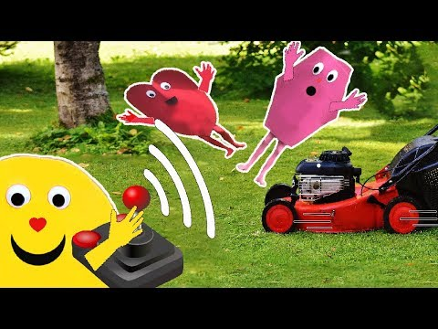 The shapes Smiley and the shapes vs the crazy lawn mower.With shapes in real life.