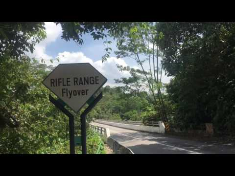 Trekking from Bukit Timah Nature reserve to Macritchie Reservoir Singapore