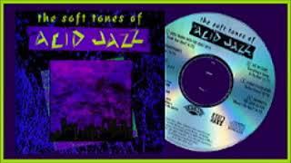V.A.★The Soft Tones of Acid Jazz ('91)★アシッド・ジャズ・コンピ