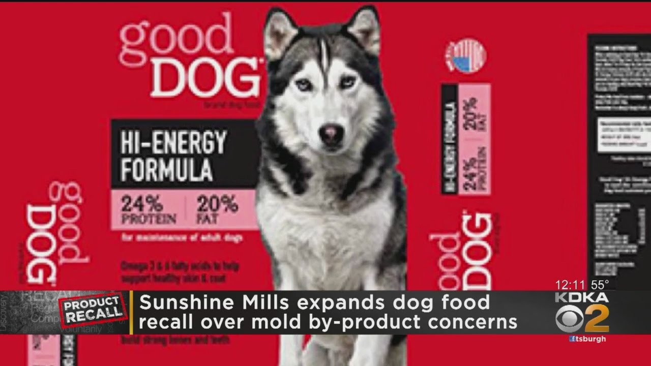 Dog food and cat food recalled for 'elevated levels' of poison ...