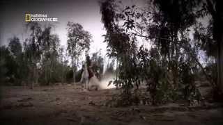 Салахуддин аль-Аюби.Док.фильм.HD