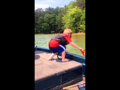 2 yr old catches his first fish