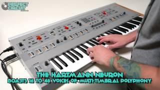 Hartmann Neuron Demo
