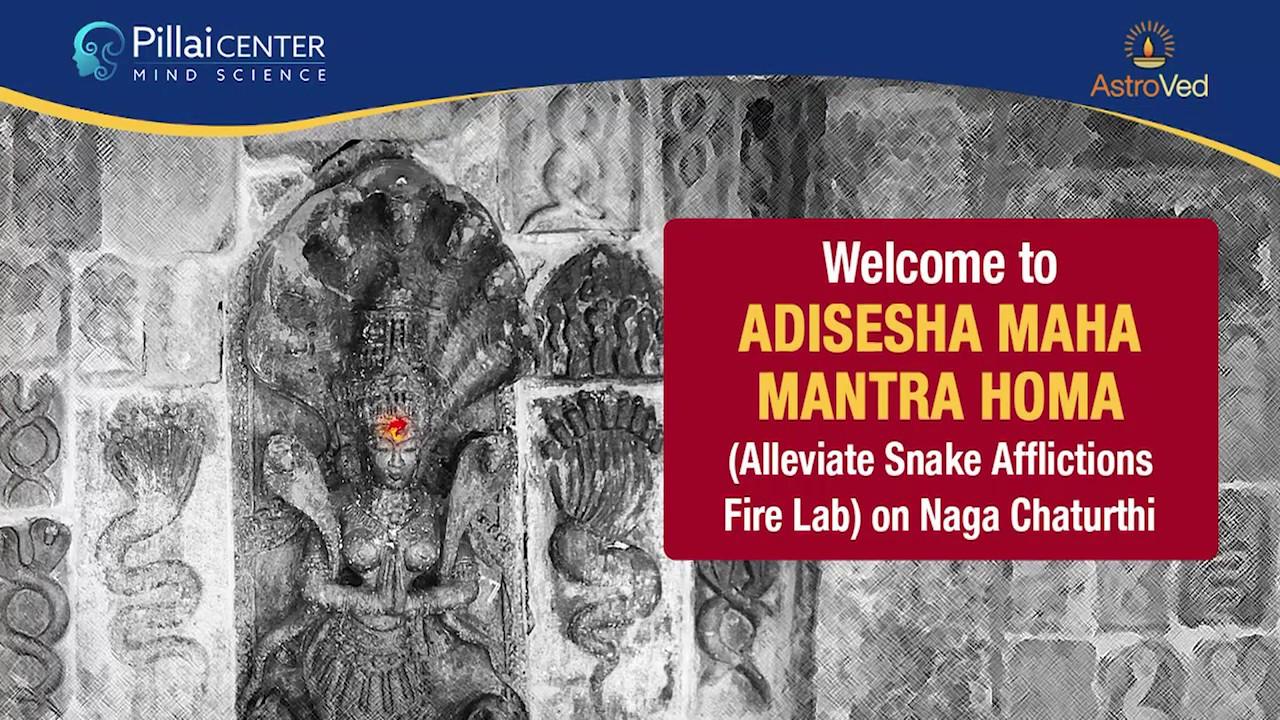 Naga Chaturthi 2019: Grand Adisesha Maha Mantra Homa - Alleviate Snake  Afflictions Fire Lab