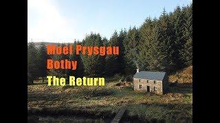 RETURN to MOEL PRYSGAU BOTHY