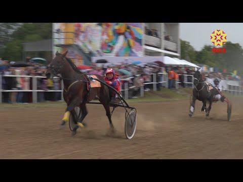 В Ядринском районе прошли Всероссийские конные бега «Кубок Чувашии - 2019»