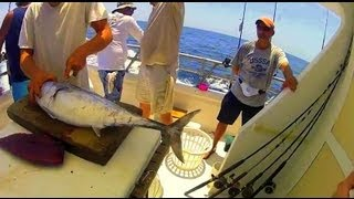 Cutting Bonito for Grouper Red Snapper Bait Gulf of Mexico Deep Sea Fishing