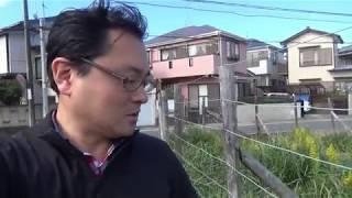 【heessac.com】散歩動画 ブタクサとセイタカアワダチソウ