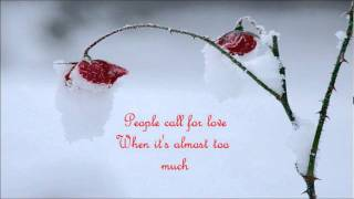 The Bees - Winter Rose (Nicolas Jaar Remix)[With Lyrics]