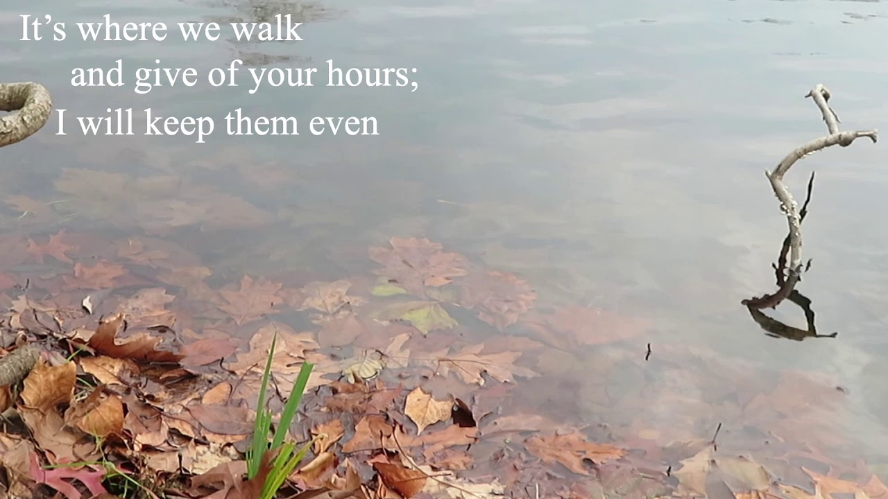 """""""blue of the marsh"""" 