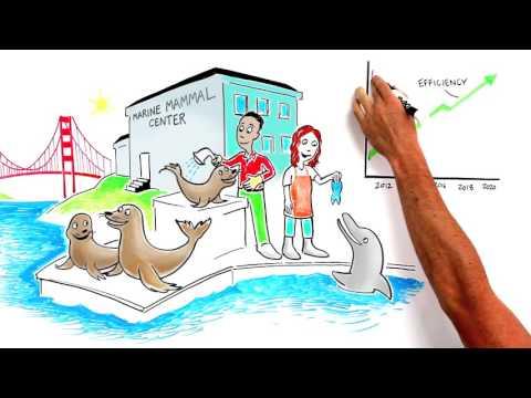 Clean Energy for Marine Mammal Center - MCE