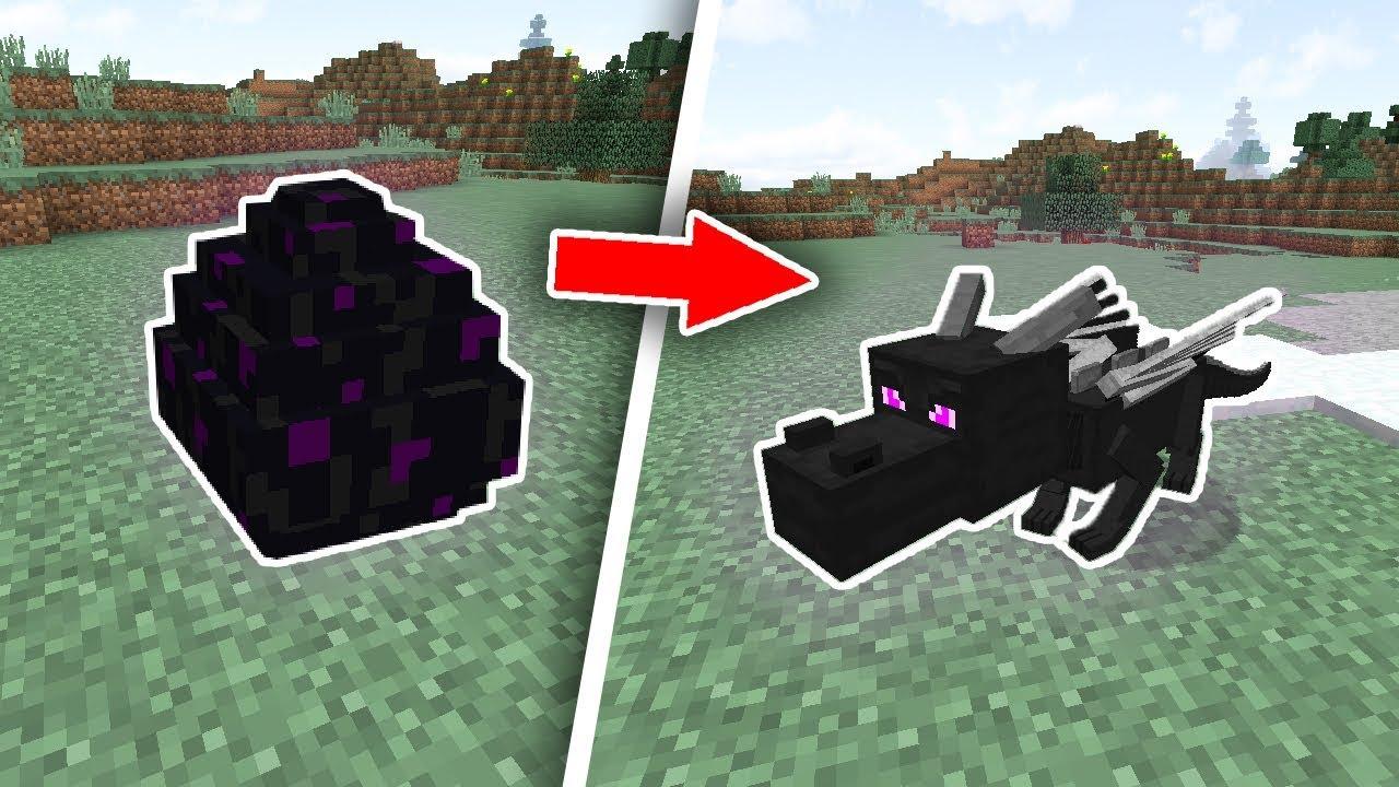 CÁCH ẤP TRỨNG RỒNG TRONG MINECRAFT – Minecraft Mod
