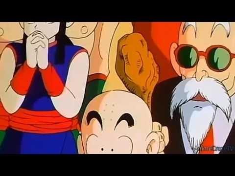 Teen Goku vs Piccolo Jr   Full Fight
