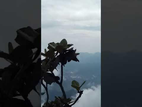 Tour Du Lịch Leo Núi Hà Nội – Fansipan  giá 1tr270N/ người. LH 0987326501