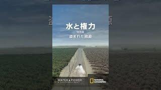 水と権力 特別篇:盗まれた資源 (吹替版) thumbnail