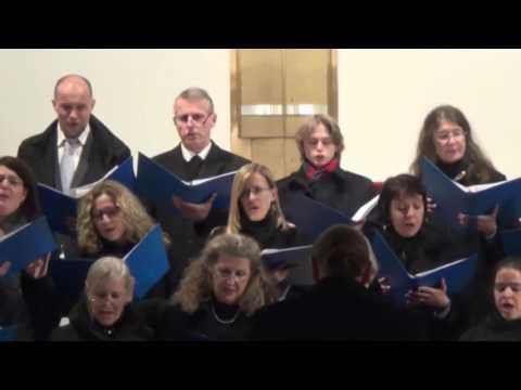 Capella Vocalis Innsbruck - Come prepare the way