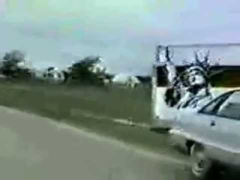 Waco Siege Rare Footage